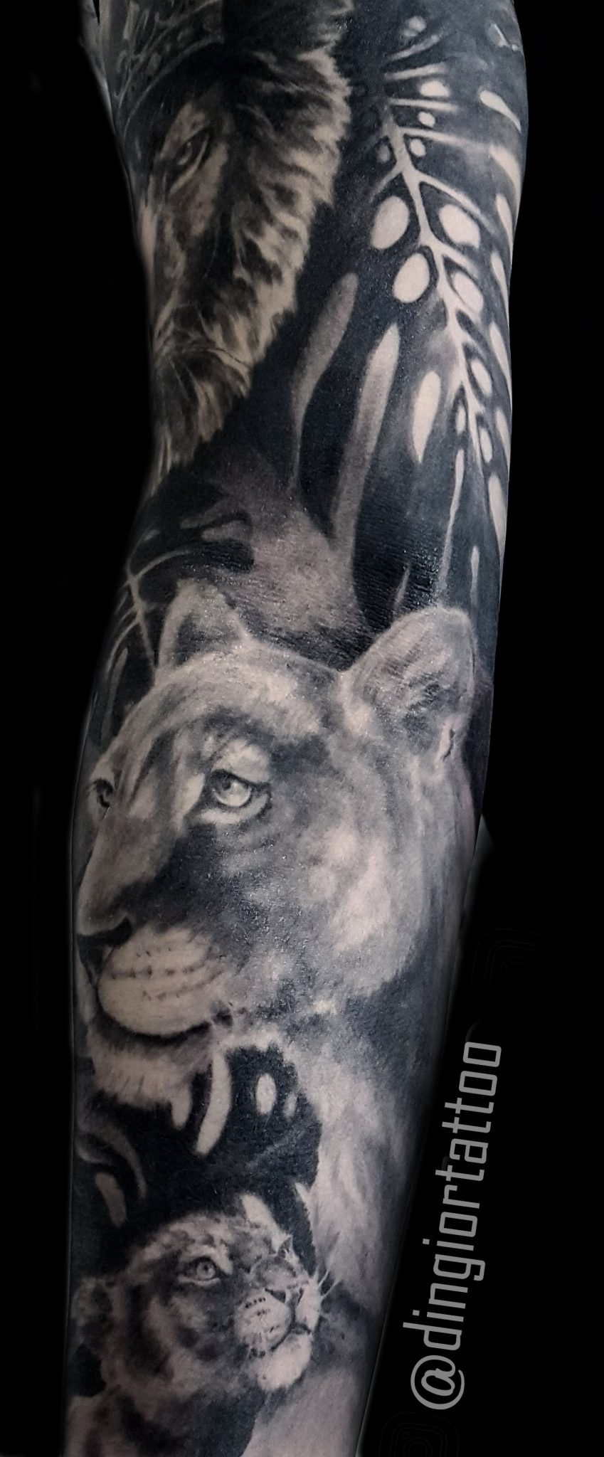 Realism or Realistic Tattoos Lion